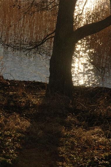 natur2.jpg