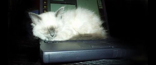 laptoppymp