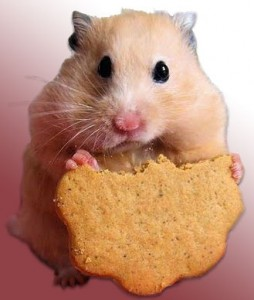 jag_som_hamster