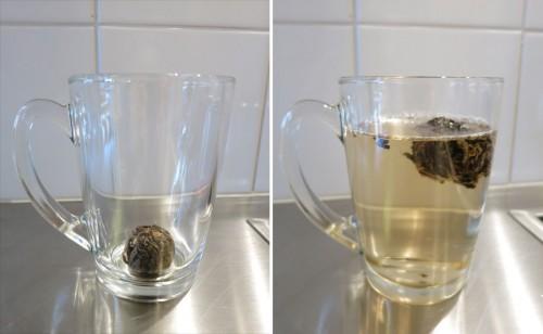 teaflower1